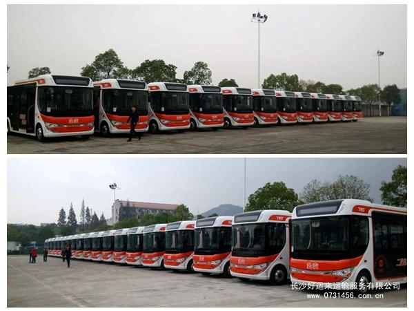 【公交车如何托运?】好运来物流,专注【客车\公交车托运】服务,安全商品车托运!