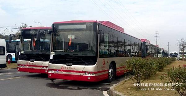 【长沙至张家界物流专线】,公交车人工驾送服务